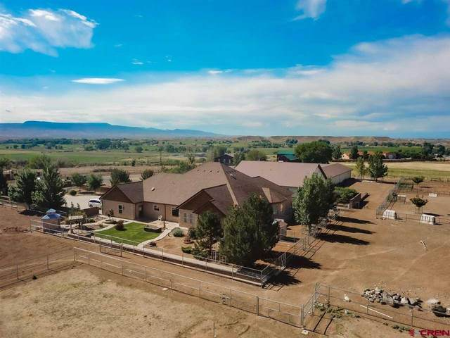 8439 2095 Road, Orchard City, CO 81410 (MLS #784214) :: The Howe Group   Keller Williams Colorado West Realty