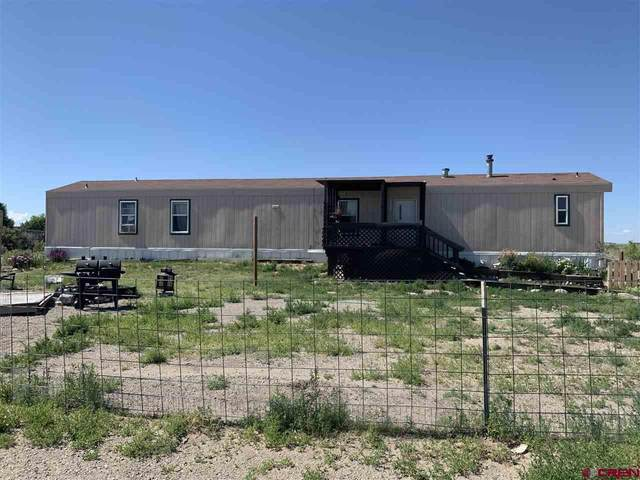 19806 Forest Drive, Alamosa, CO 81101 (MLS #784230) :: The Howe Group | Keller Williams Colorado West Realty
