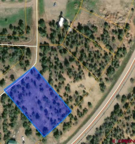 TBD State Hwy 151, Arboles, CO 81121 (MLS #784236) :: The Howe Group   Keller Williams Colorado West Realty
