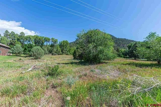Lot 4 County Road 201, Durango, CO 81301 (MLS #784334) :: Durango Mountain Realty