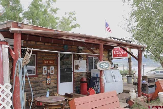 3200 County Road 721, Gunnison, CO 81230 (MLS #784348) :: Dawn Howe Group | Keller Williams Colorado West Realty