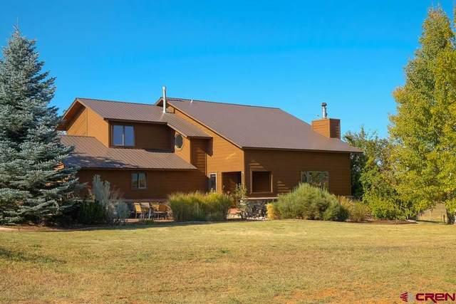 482 Wageman Road, Durango, CO 81303 (MLS #784353) :: Durango Mountain Realty