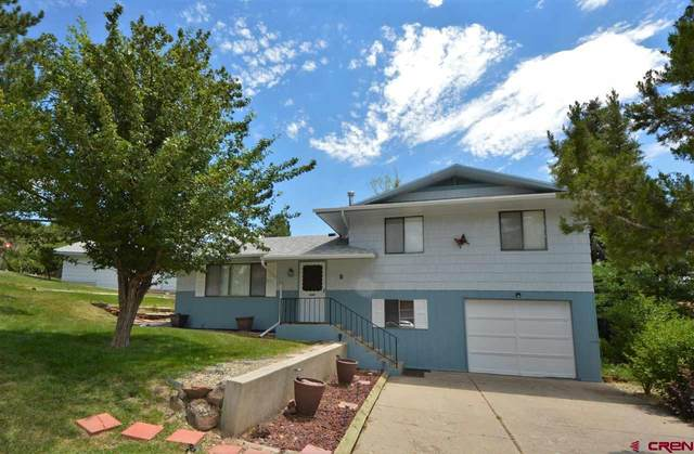 8 Alder Drive, Paonia, CO 81428 (MLS #784398) :: The Howe Group | Keller Williams Colorado West Realty