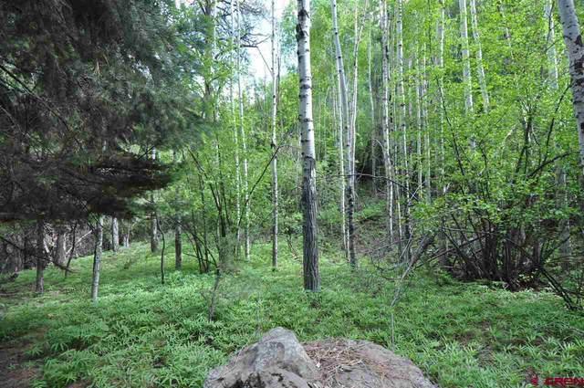 184 Reynolds Place, Ridgway, CO 81432 (MLS #784421) :: The Howe Group   Keller Williams Colorado West Realty