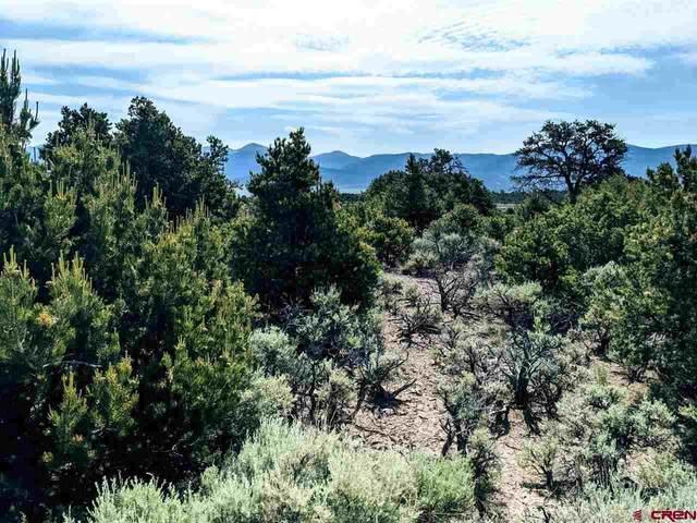 0 Elk Trail, San Luis, CO 81152 (MLS #784438) :: The Howe Group | Keller Williams Colorado West Realty