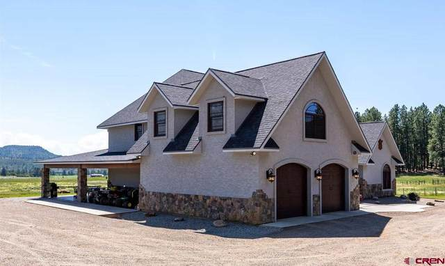 567 Bald Eagle Drive, Bayfield, CO 81122 (MLS #784451) :: The Howe Group | Keller Williams Colorado West Realty