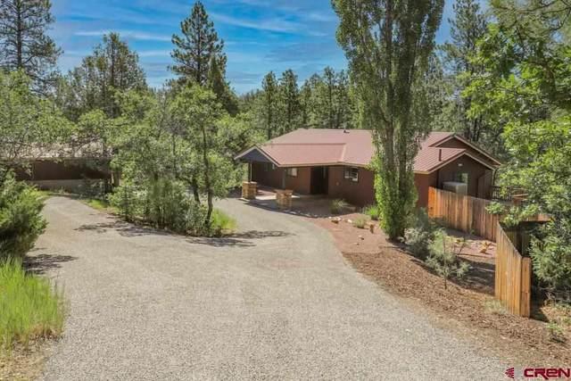168 Pinon Lane, Durango, CO 81301 (MLS #784460) :: Durango Mountain Realty
