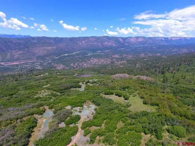 188 Grouse Point, Durango, CO 81301 (MLS #784464) :: Durango Mountain Realty