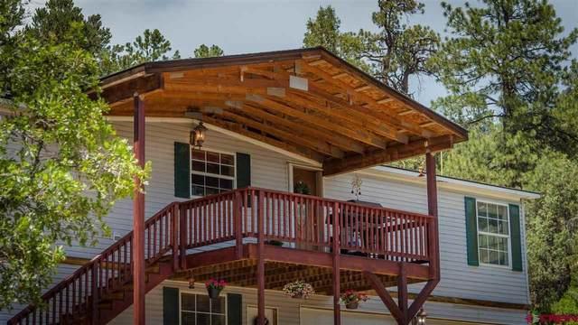 2655 County Road 141, Durango, CO 81303 (MLS #784466) :: Durango Mountain Realty