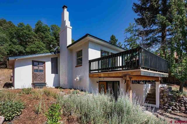 3033 W 4th Avenue, Durango, CO 81301 (MLS #784473) :: Durango Mountain Realty