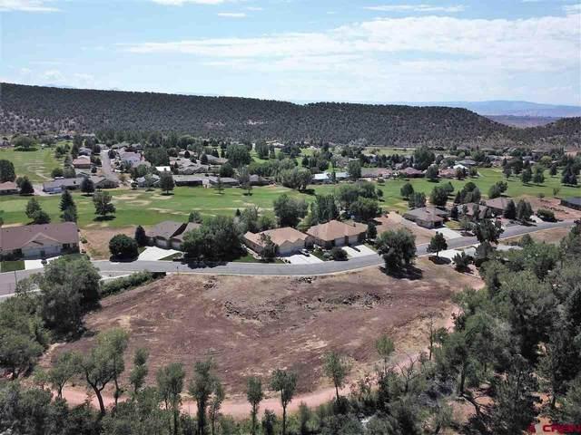 TBD SE Stonebridge Drive, Cedaredge, CO 81413 (MLS #784494) :: The Howe Group | Keller Williams Colorado West Realty