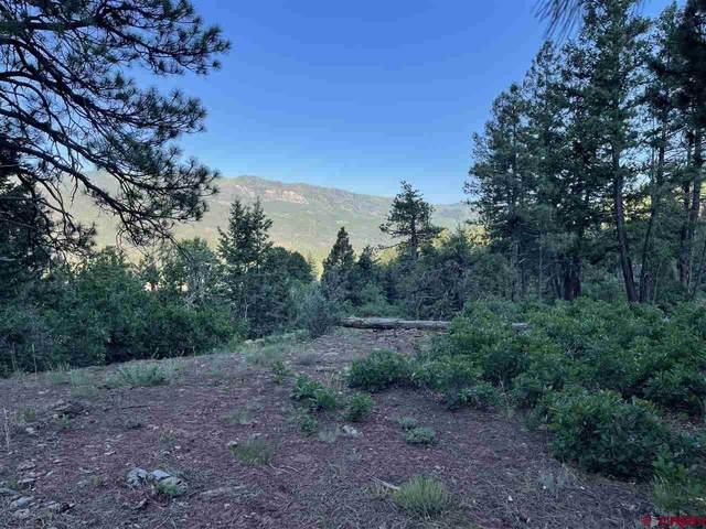 247 Cliffs Edge Drive, Durango, CO 81301 (MLS #784497) :: Durango Mountain Realty