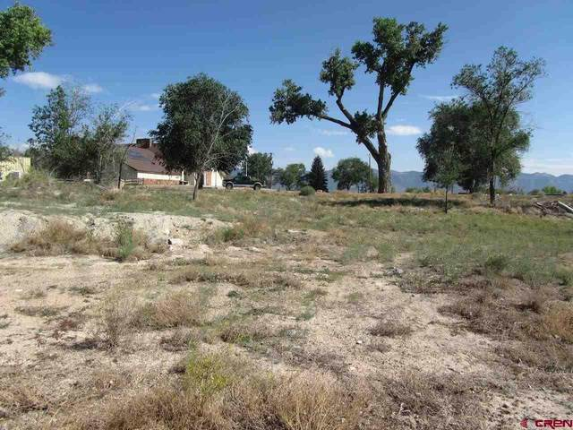 TBD Par Drive, Cortez, CO 81321 (MLS #784593) :: The Howe Group   Keller Williams Colorado West Realty