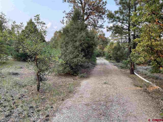 473 Justin's Road, Pagosa Springs, CO 81147 (MLS #784623) :: The Howe Group | Keller Williams Colorado West Realty