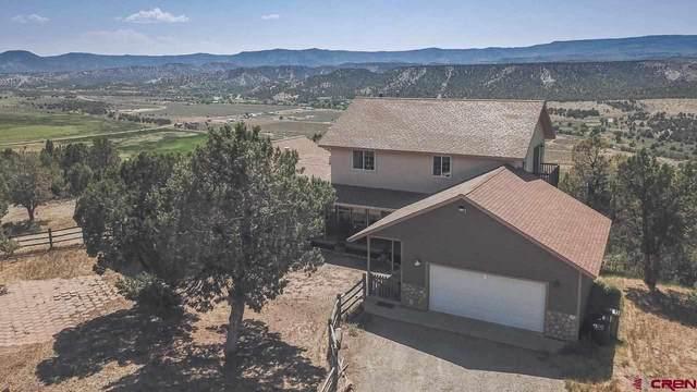 1637 County Road 214, Durango, CO 81303 (MLS #784708) :: Durango Mountain Realty