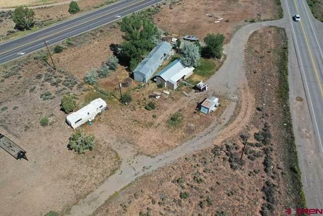4494 S Hwy 550, Durango, CO 81303 (MLS #784724) :: The Howe Group | Keller Williams Colorado West Realty