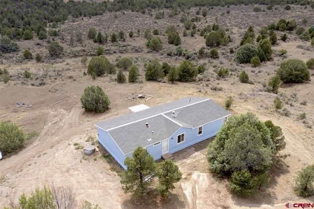 139 Venado Ln, Durango, CO 81303 (MLS #784780) :: The Howe Group | Keller Williams Colorado West Realty