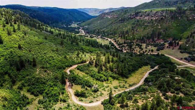 TBD Road 46, Mancos, CO 81328 (MLS #784785) :: The Howe Group | Keller Williams Colorado West Realty