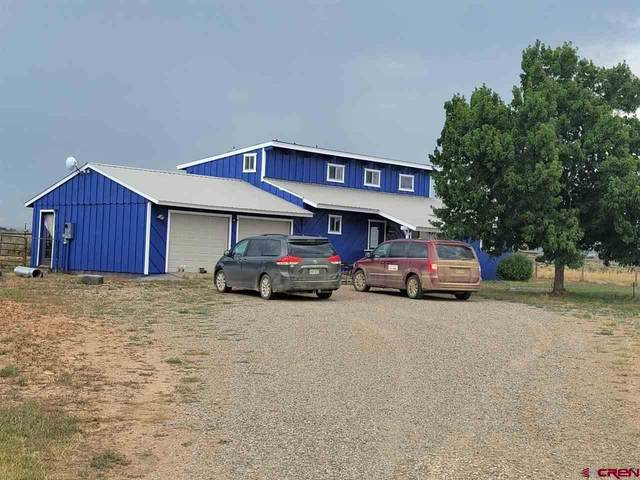2876 County Road 130, Hesperus, CO 81326 (MLS #784821) :: Durango Mountain Realty