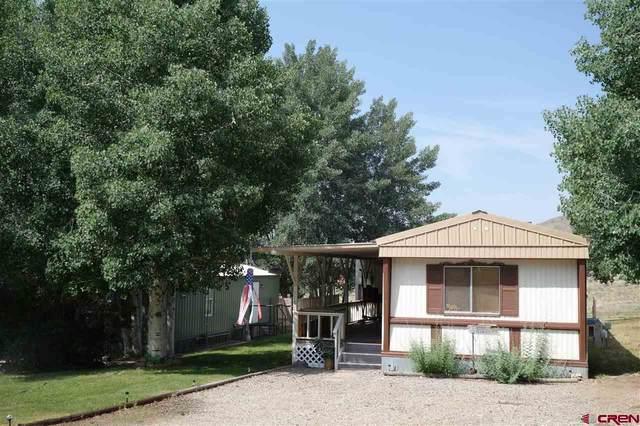 28357 W Us Highway 50 Lot 118, Gunnison, CO 81230 (MLS #784828) :: Dawn Howe Group | Keller Williams Colorado West Realty