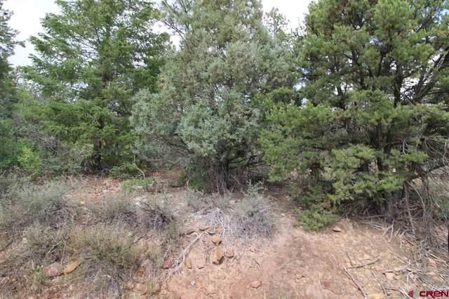422 West View, Pagosa Springs, CO 81147 (MLS #784836) :: The Howe Group | Keller Williams Colorado West Realty