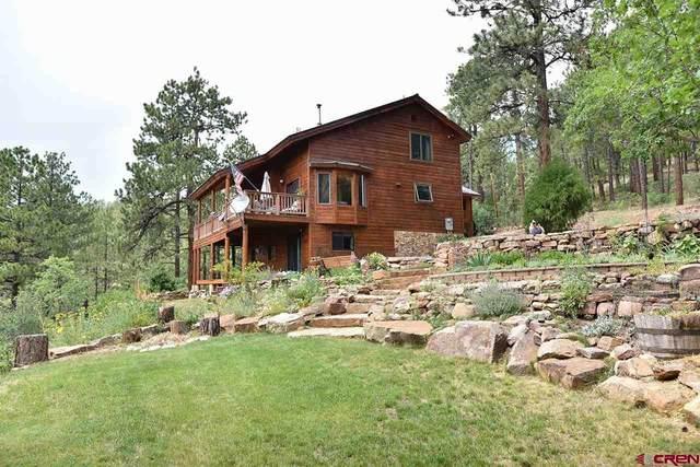 288 Canyon Dr., Durango, CO 81301 (MLS #784853) :: Durango Mountain Realty