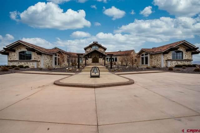 714 Curecanti Circle, Grand Junction, CO 81507 (MLS #784903) :: The Howe Group   Keller Williams Colorado West Realty