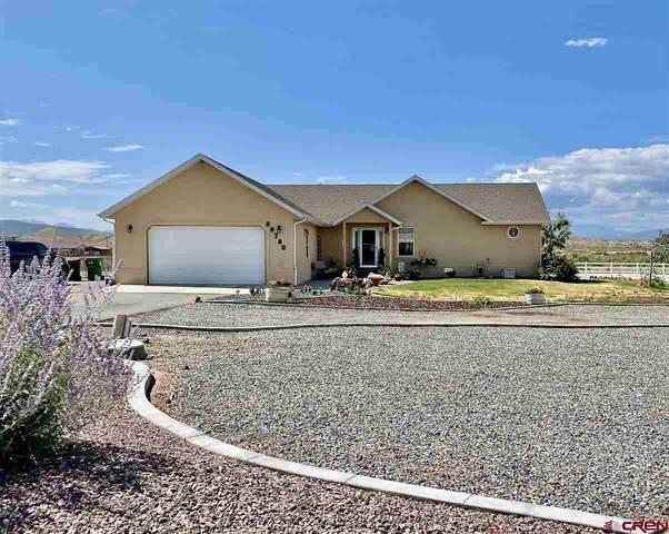68780 Overland Drive, Montrose, CO 81401 (MLS #784937) :: Dawn Howe Group   Keller Williams Colorado West Realty