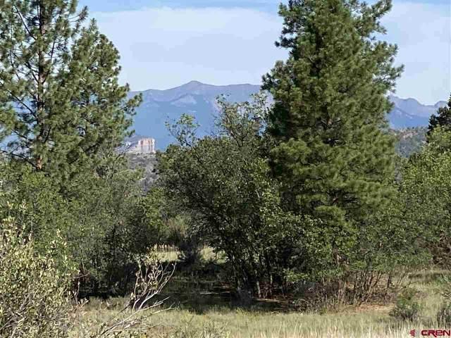 448 Valle Escondido Drive, Durango, CO 81303 (MLS #784945) :: Durango Mountain Realty