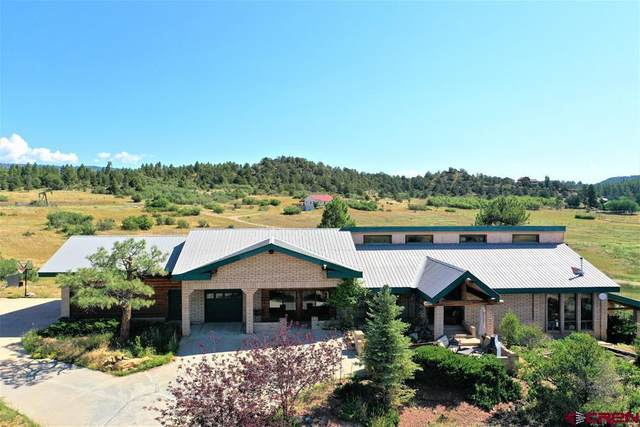 345 Cr 224, Durango, CO 81303 (MLS #784985) :: Durango Mountain Realty