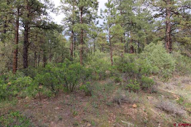 459 Doc Adams, Pagosa Springs, CO 81147 (MLS #784995) :: The Howe Group | Keller Williams Colorado West Realty