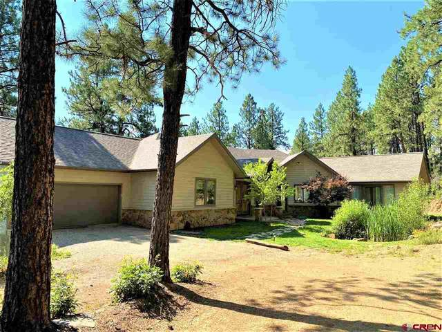 510 Deer Trail, Durango, CO 81303 (MLS #785026) :: Durango Mountain Realty