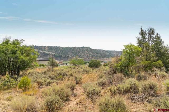 TBD 1C Girard Street, Durango, CO 81303 (MLS #785027) :: Durango Mountain Realty
