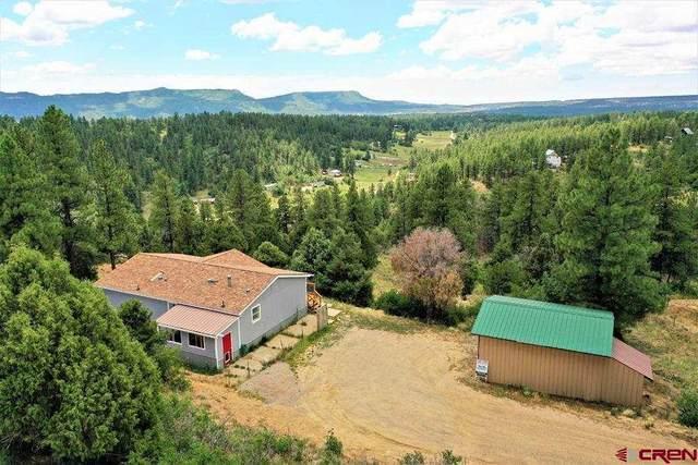86 Panorama Drive, Durango, CO 81303 (MLS #785074) :: Durango Mountain Realty