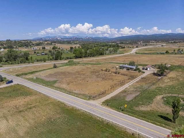 451 County Road 510, Durango, CO 81303 (MLS #785082) :: Durango Mountain Realty