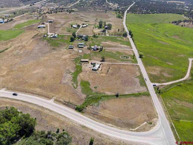 44 County Road 225A, Durango, CO 81303 (MLS #785086) :: Durango Mountain Realty