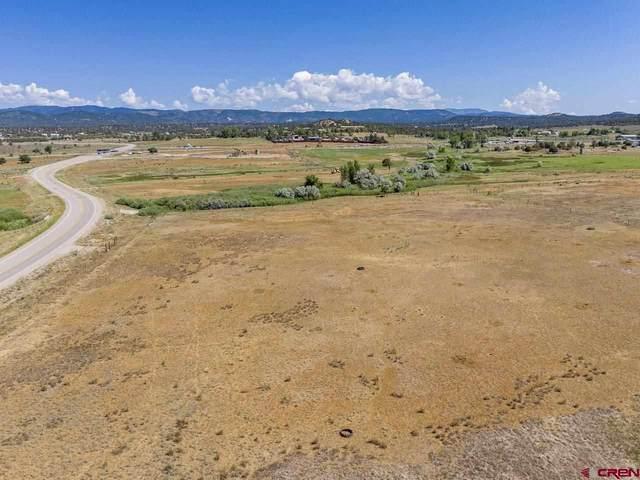 86 County Road 225A, Durango, CO 81303 (MLS #785087) :: Durango Mountain Realty