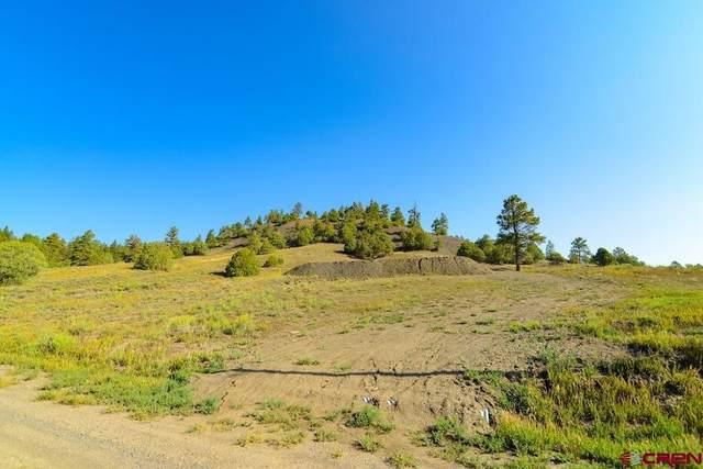 75 Dandelion Court, Pagosa Springs, CO 81147 (MLS #785090) :: The Howe Group   Keller Williams Colorado West Realty
