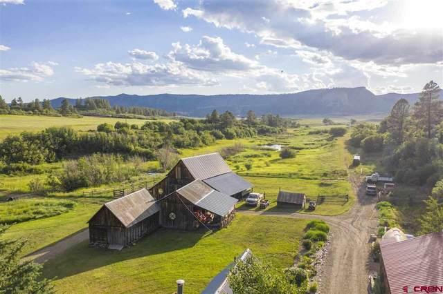 3076 W Hwy 160, Mancos, CO 81328 (MLS #785156) :: Durango Mountain Realty
