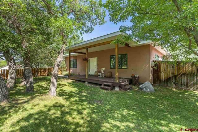 2059 Kingfisher Court, Durango, CO 81301 (MLS #785158) :: Durango Mountain Realty
