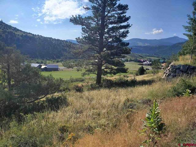 436 Rio Grande Club Trail, South Fork, CO 81154 (MLS #785164) :: The Howe Group | Keller Williams Colorado West Realty