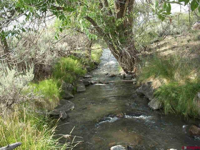 TBD Westridge Road, Cedaredge, CO 81413 (MLS #785169) :: The Howe Group | Keller Williams Colorado West Realty