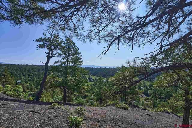 1149 Harvard Avenue, Pagosa Springs, CO 81147 (MLS #785182) :: The Howe Group   Keller Williams Colorado West Realty