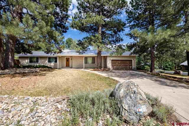 10 Cedar Court, Durango, CO 81303 (MLS #785183) :: Durango Mountain Realty