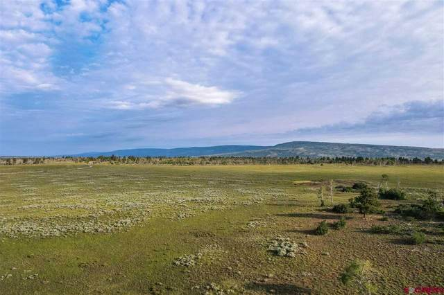 tbd Panorama Lane, Placerville, CO 81430 (MLS #785188) :: The Howe Group   Keller Williams Colorado West Realty