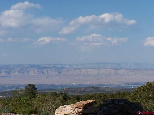 6003 Elk Ranch Road, Glade Park, CO 81523 (MLS #785241) :: The Howe Group   Keller Williams Colorado West Realty