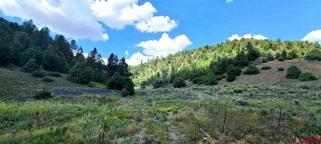 1750 Cr 141, Durango, CO 81303 (MLS #785258) :: Durango Mountain Realty