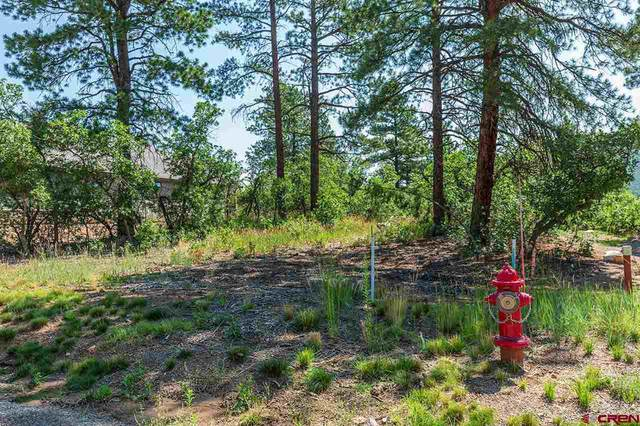 67 Farm Pond Lane, Durango, CO 81301 (MLS #785282) :: The Howe Group   Keller Williams Colorado West Realty
