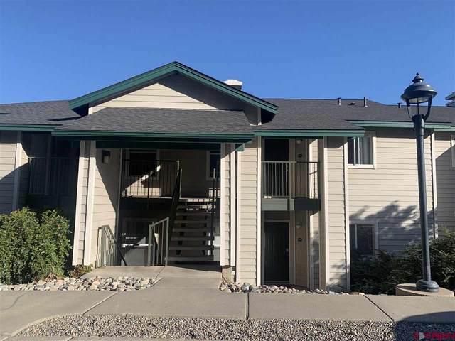 1100 Goeglein Gulch Rd #234, Durango, CO 81301 (MLS #785287) :: Dawn Howe Group | Keller Williams Colorado West Realty