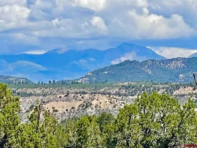 1790 Green Shadows Road, Durango, CO 81303 (MLS #785315) :: Dawn Howe Group | Keller Williams Colorado West Realty